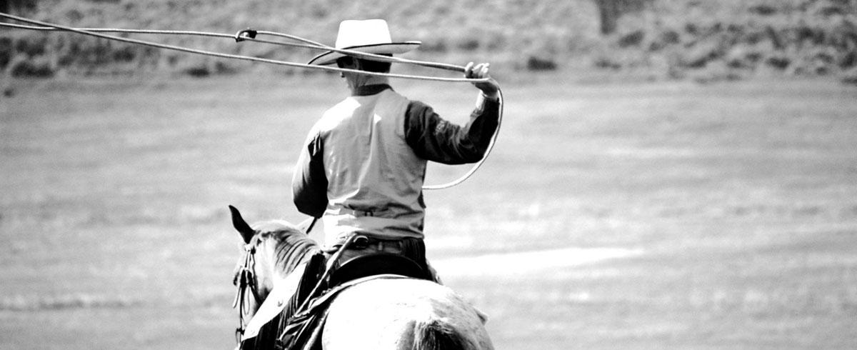 Developing Horsemanship - Leadership Through Horses